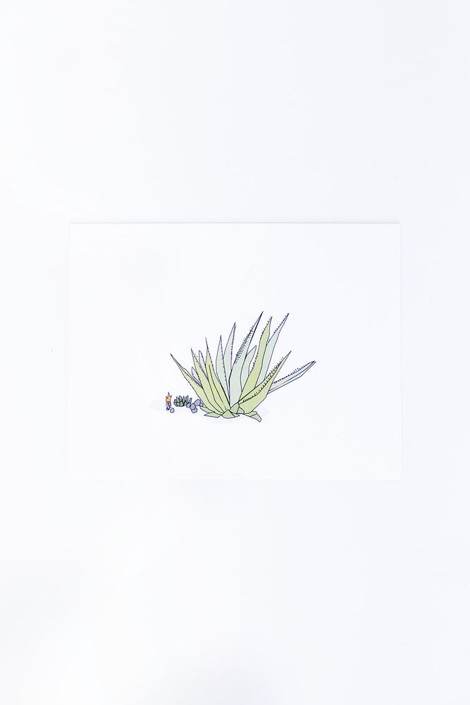 LIZ FRANCES STUDIO - AGAVE CARD