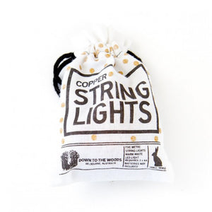 String Lights Copper Batteries 5M