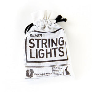 String Lights Silver Batteries 5M