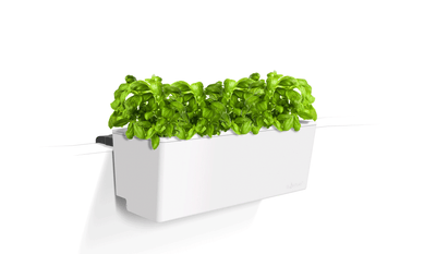 Mini Rail Planter