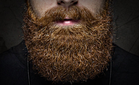 growing out your beard