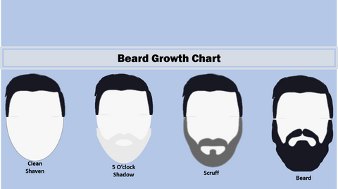 Beard Growth Scale