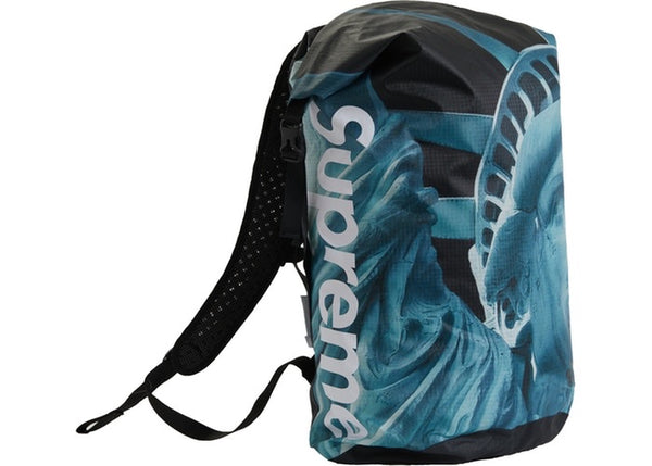 Supreme/The North Face Statue of Liberty Waterproof Backpack