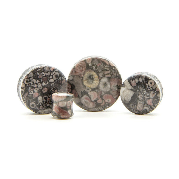 Fossil Jasper Stone Plug - Custom Flesh Plugs & Gauges, Alternative, Tattoo - Stone Plugs - 1
