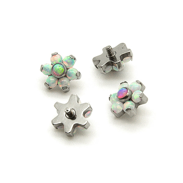 Dermal Top - Flower Opal - (Titanium)