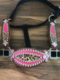 Pink with cheetah halter