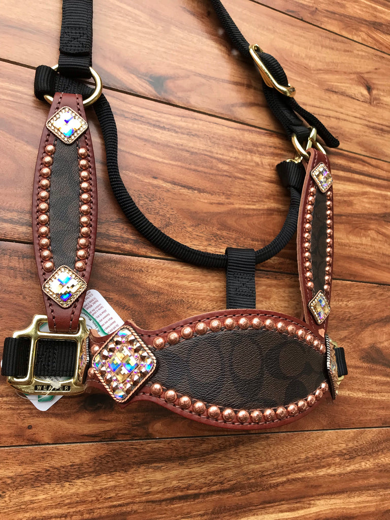 Brown Coach on Black Halter with cheeks