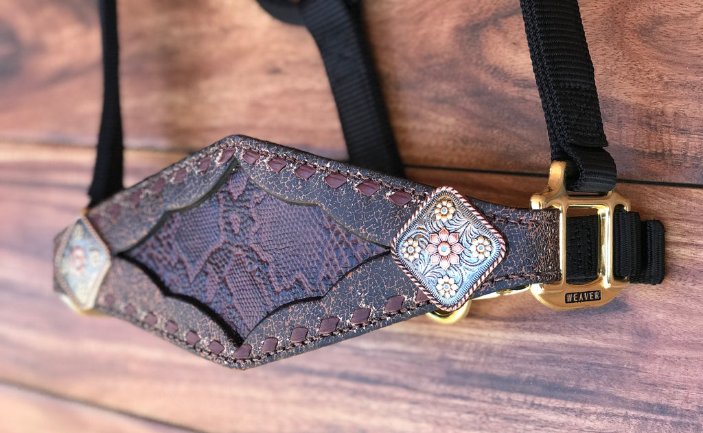 Burgundy Python inlay with Burgundy Buckstitch Halter