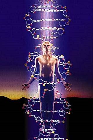 DNA (12 strand activation) +Alien DNA if any