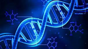 Whats in your DNA?