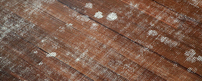 Can Cheap Rug Pads Ruin Your Expensive Floors Rugpadusa