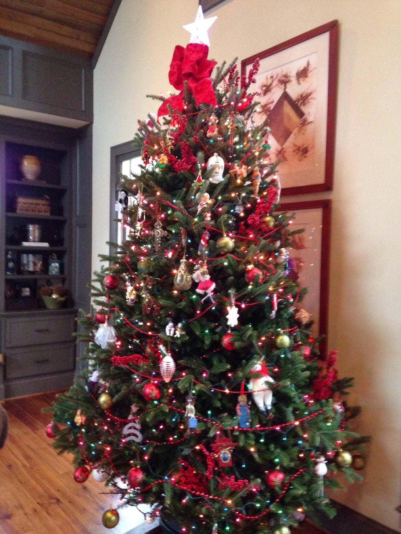 Clements-Christmas-Tree-Fraser-Fir-2015-Nashville-Tennessee-615