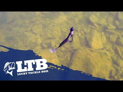 Tip #2 For Summer Bass Fishing