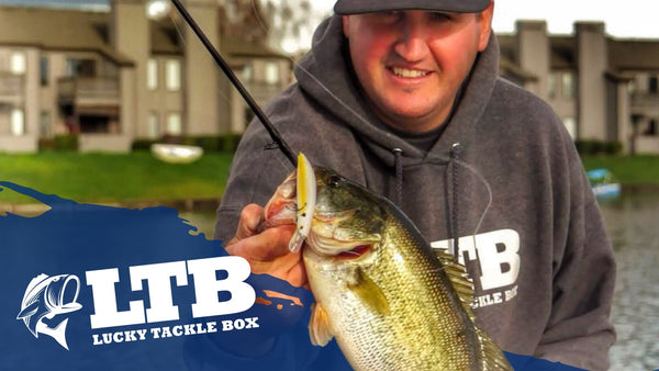 How to Catch Bass with Jerkbaits