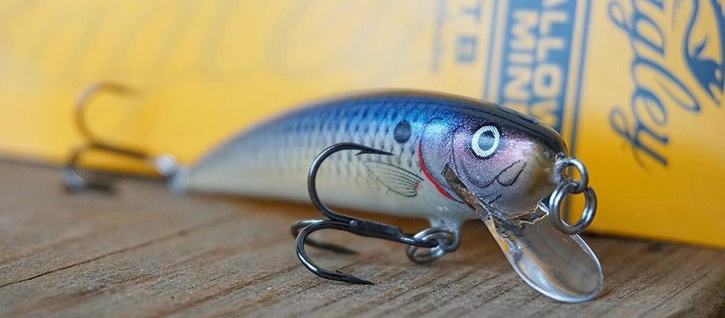 The Lucky Tackle Box exclusive Bagley Baits Shallow Minnow jerkbait is a featured fall bass fishing lure.