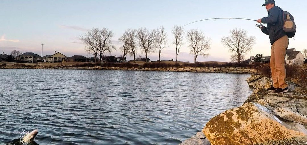 A fisherman is reeling in a largemouth bass on the bank of a lake in the fall season.