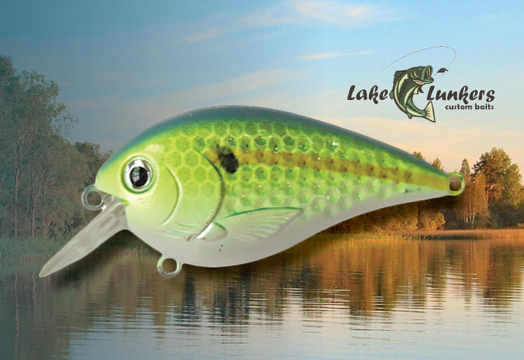 Lake Lunkers Bait Review and Fishing Tips from Lucky Tackle Box
