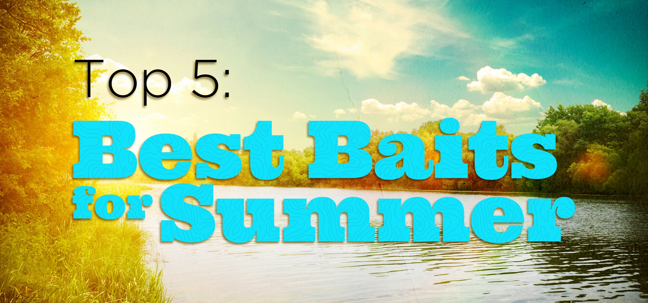 top 5 summer baits