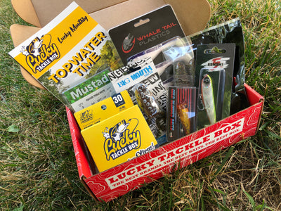 Bass Topwater Theme Bonanza Box (7+ Lures)