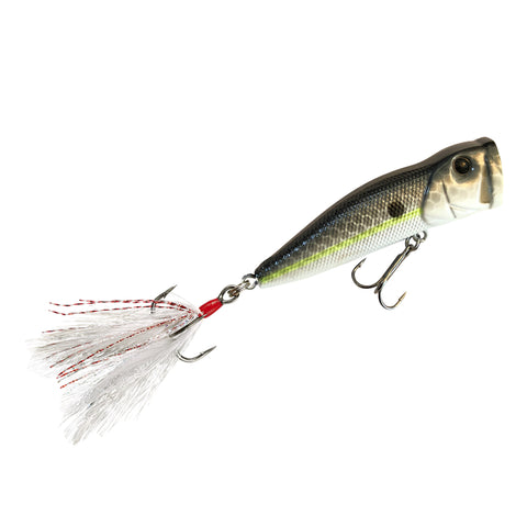 Popper Topwater w/Feather Treble