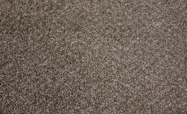 Carpet Style Denali Color Toffee Tas Flooring