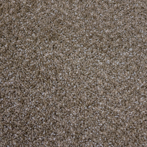 TAS Flooring | Carpet Style Denali | Color Toffee
