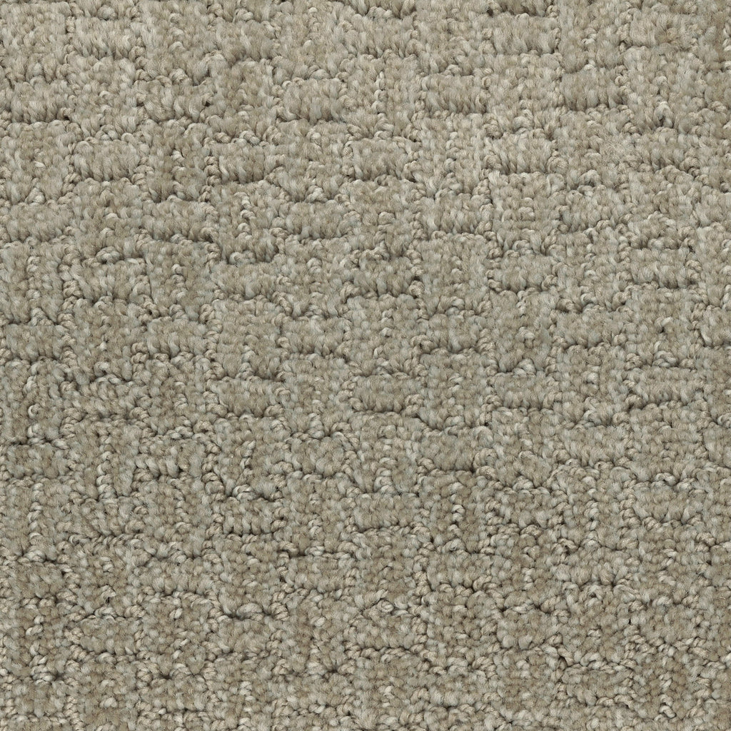 TAS Flooring | Carpet Style Sequence | Color Daytona