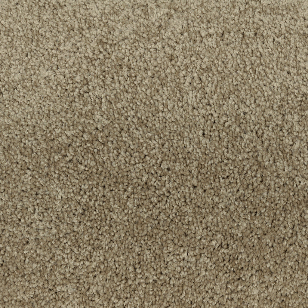 TAS Flooring | Carpet Style Time Out | Color Beige