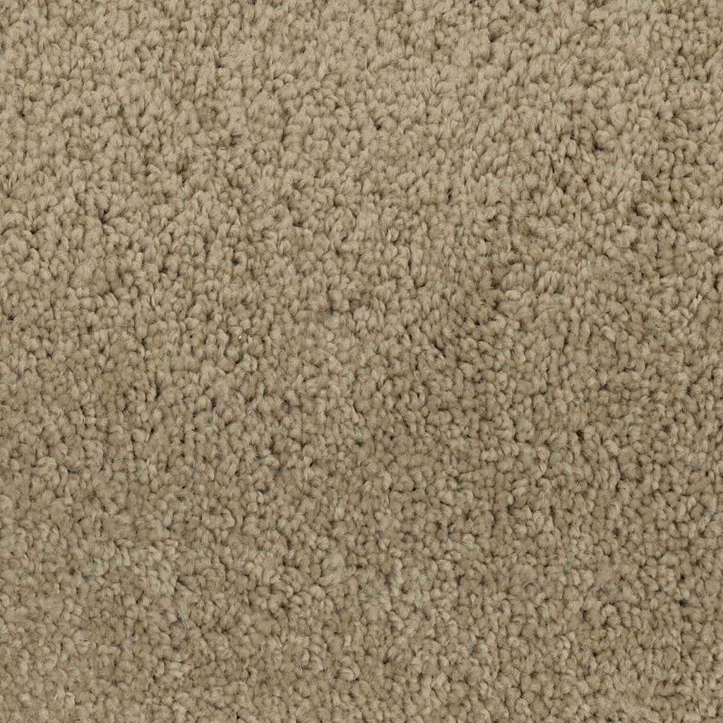 TAS Flooring | Carpet Style Time Out | Color Creme