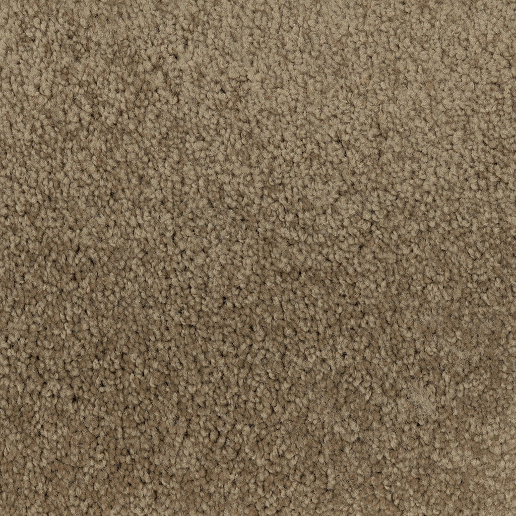 TAS Flooring | Carpet Style Time Out | Color Khaki