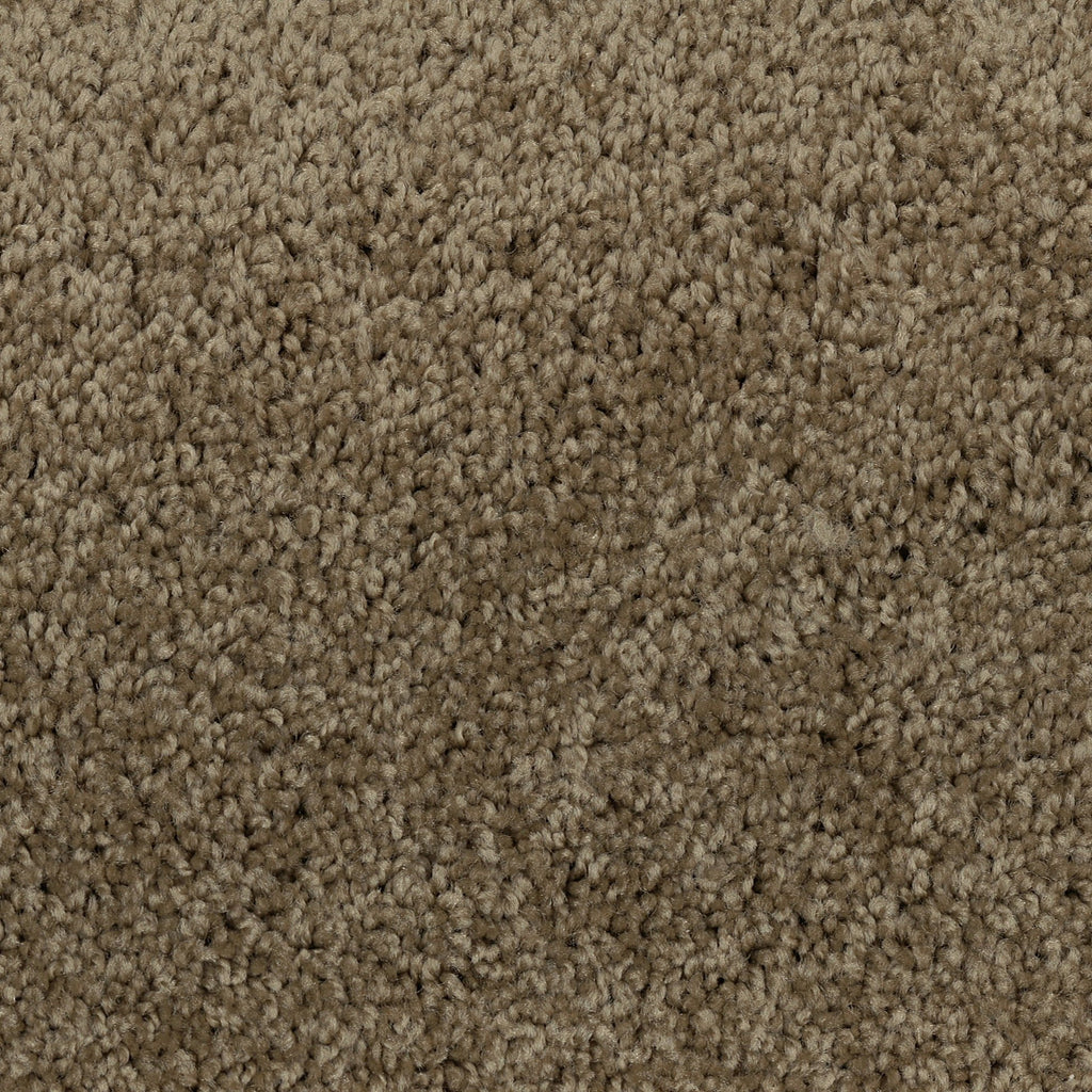 TAS Flooring | Carpet Style Time Out | Color Taupe