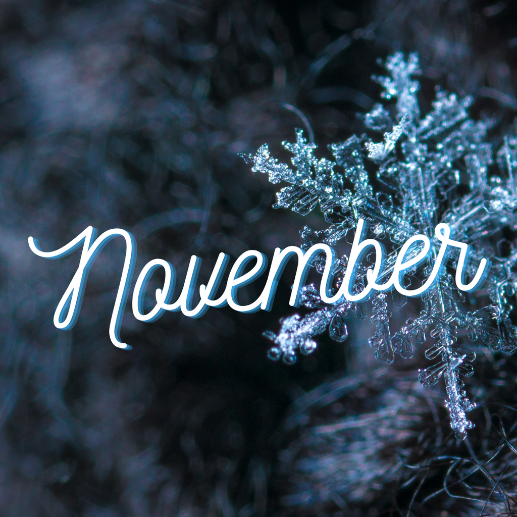 November @ Sweet Yarns