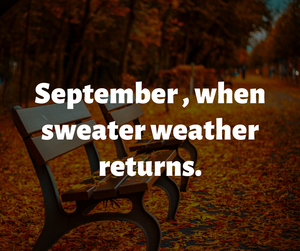 Fall begins at Sweet Yarns