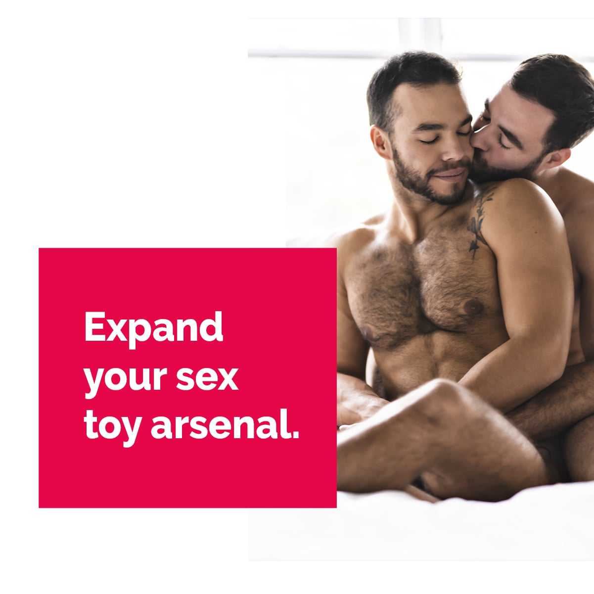 gay sex toy
