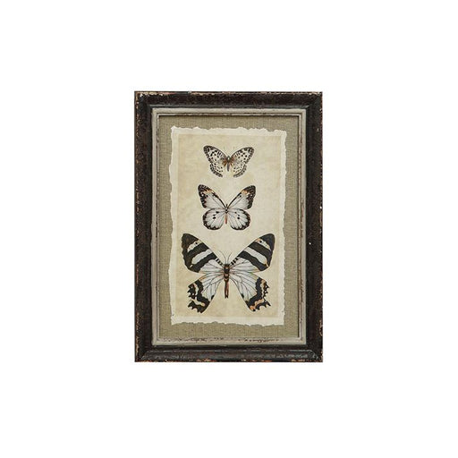 3 Butterflies framed insect drawing wall decor accent piece. - Candlestock.com