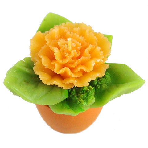 Potted Orange Carnation Candle - Candlestock.com