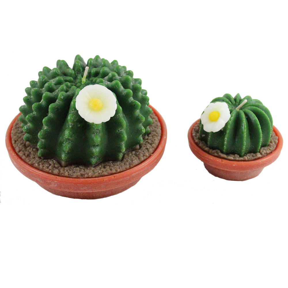Potted Cactus With Flower Candle - Candlestock.com