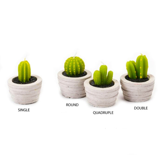 Potted Cactus Candles - Candlestock.com