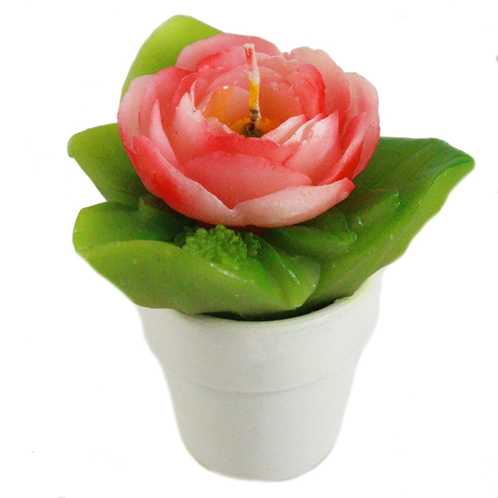 Small Camelia In Pot Candle - Candlestock.com