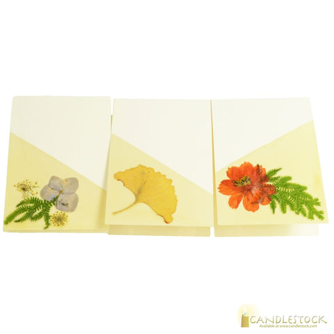 Beeswax Dipped Card In Multiple Sizes