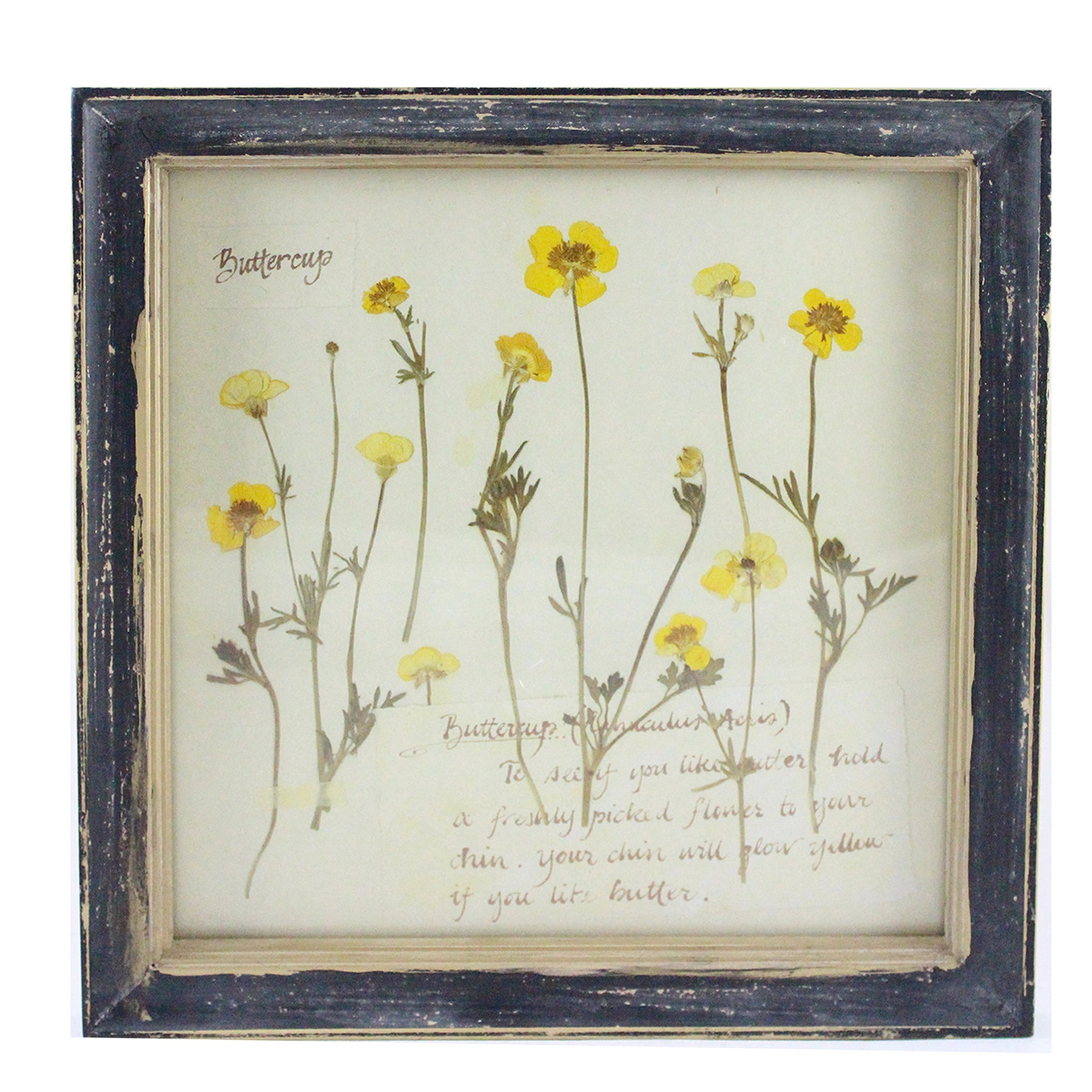 Tap Or Pinch To Zoom. Rustic Wood Framed Buttercup Pressed Flower Wall  Decor. Rustic ...
