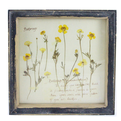 Rustic Wood Framed Buttercup Pressed Flower Wall Decor