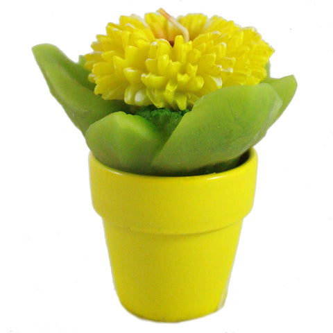 Small Daisy In Pot Candle - Candlestock.com