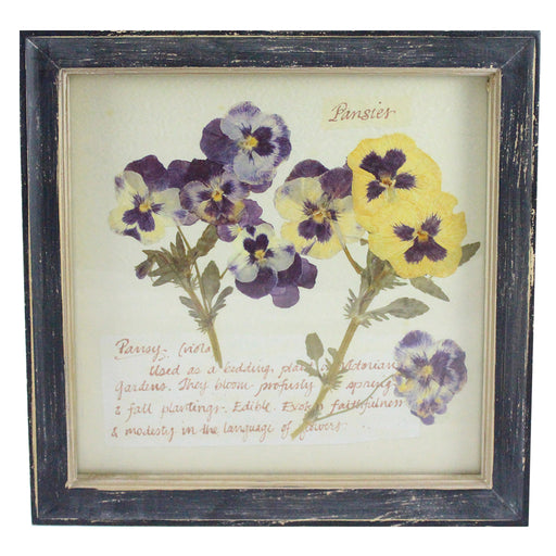 Rustic Wood Framed Pansy Pressed Flower Wall Decor