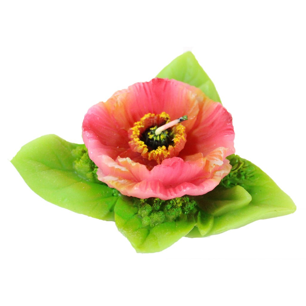 Pink White Poppy In A Pot Candle Candlestock