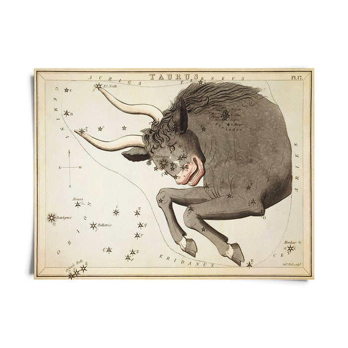 Vintage Zodiac Astrology Prints