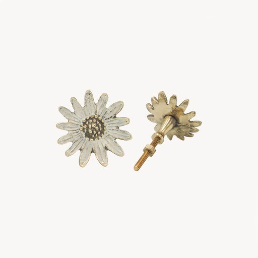 Brass Daisy Drawer Pull