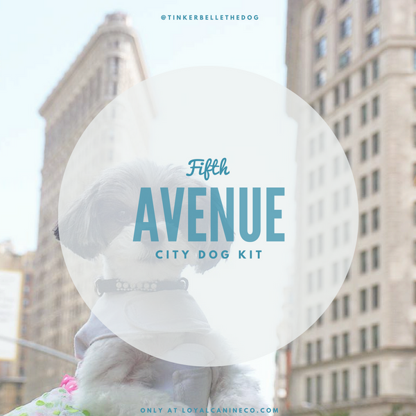 fifth avenue city dog essentials kit