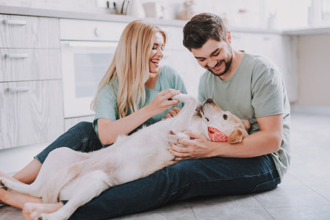 Man and woman playing with their dog in the kitchen, dog shampoo concpet