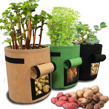 Plant Grow Bags | 3 Pcs | Sturdy, Breathable, Nonwoven Fabric Cloth Planter Pot for Gardening Vegetables/ Potatoes - GadgetSourceUSA